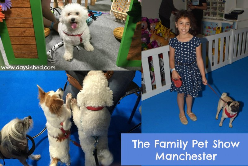 Family Pet Show Manchester